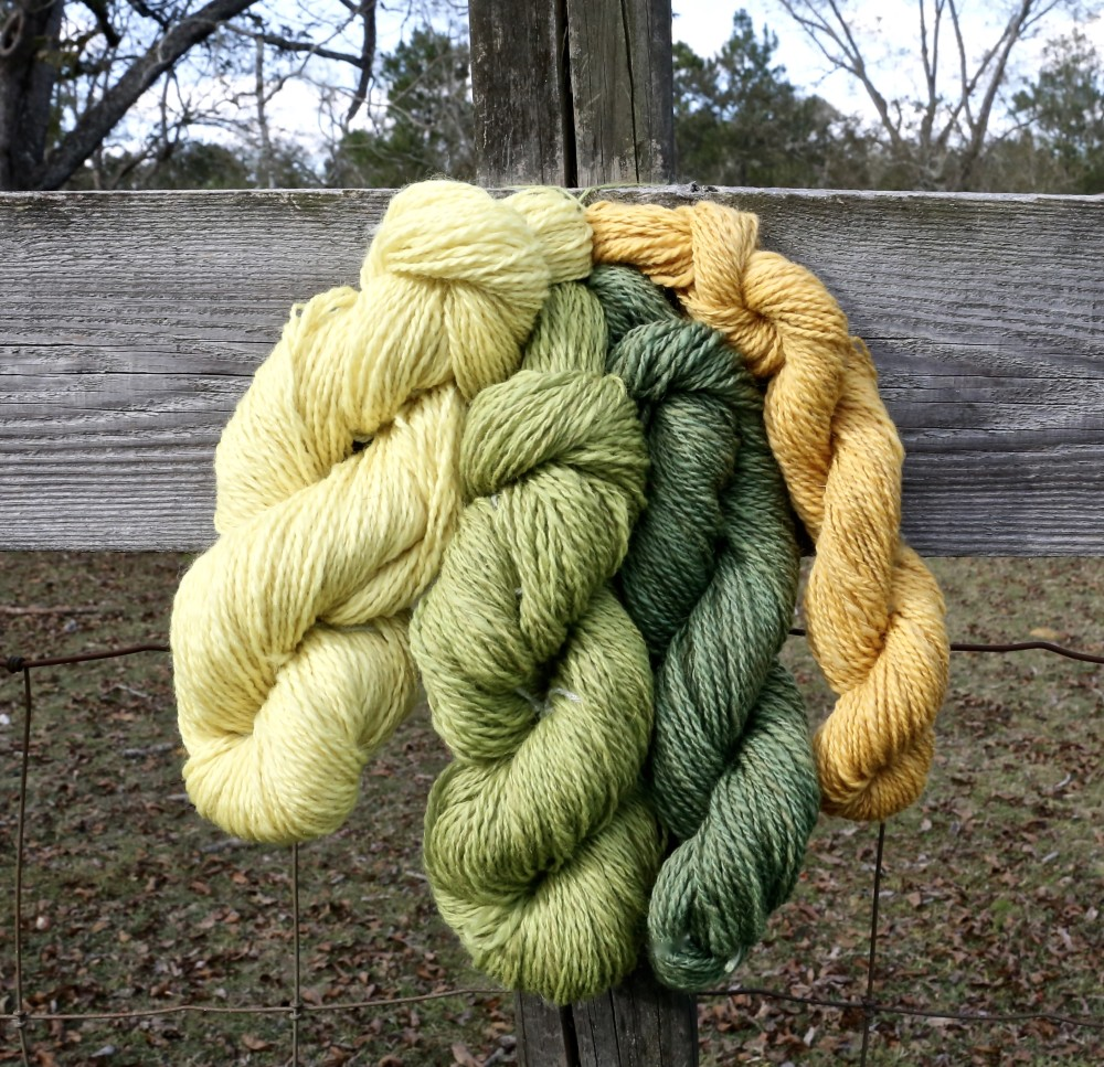 Goldenrod dyed yarn
